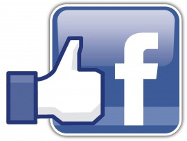 facebook_like_logo_1-270x204